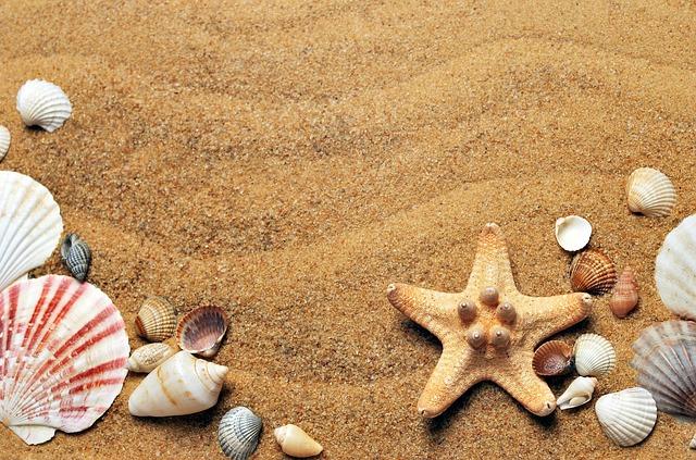 písek s mušličkami
